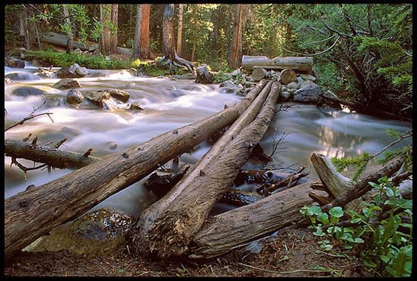 A log bridge crosses a small stream in Colorado. Log bridges are common in the wilderness.