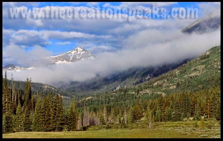 Colorado Wilderness I