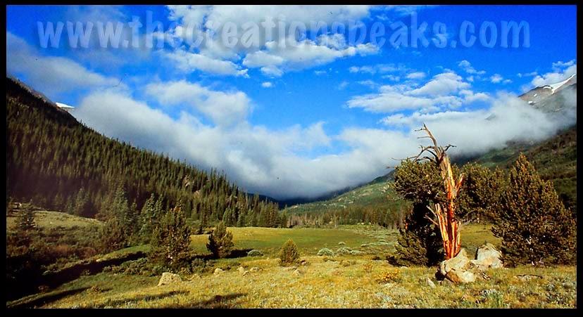 Colorado scans-2