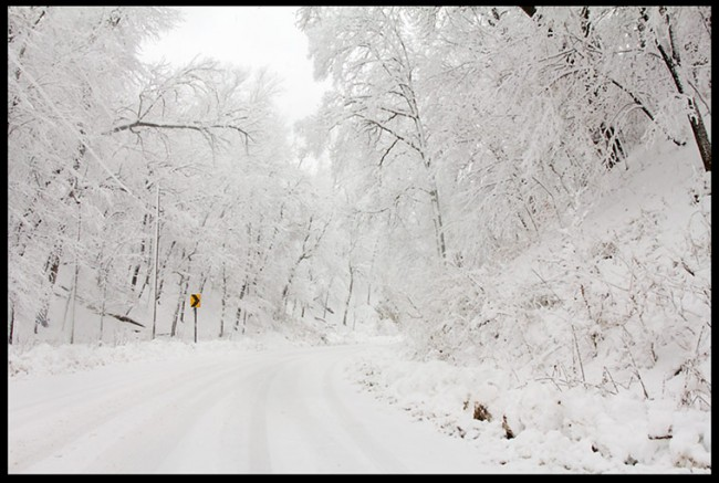 New fallen snow covers a road and trees creating a white Christmas like scene.
