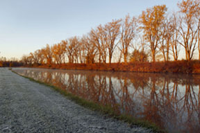 Fall trees Line a canal and illustrate the design concept of leading lines.