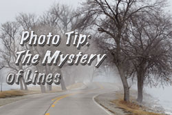 Mystery-of-Lines