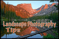 Photo-Tips-Intro-Cover-with-color
