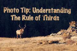 Rule-of-thirds