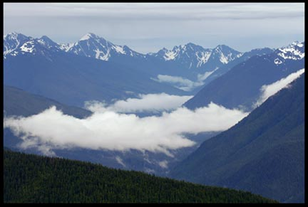A mountain valley with low clouds and grey sky in Olympic National Park