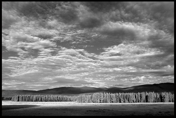 A black and white photo of a clearing in the sky over the trees in the Kawuneeche Valley in Rocky Mount National Park