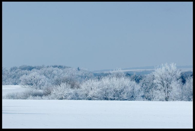 Winter blue snow and frost covered field, Eastern Nebraska and Psalm 146:16 He gives snow like wool