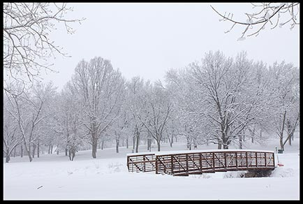 Snow covered bridge and trees in Seymour Smith Park in Omaha