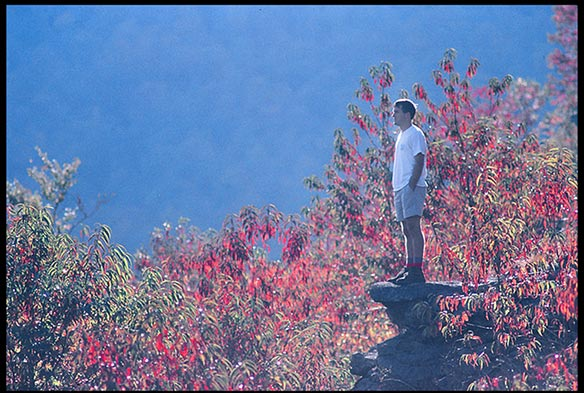 Man on a rock in front of rhododendron in fall colors. Should Christians consider the idea of creation care