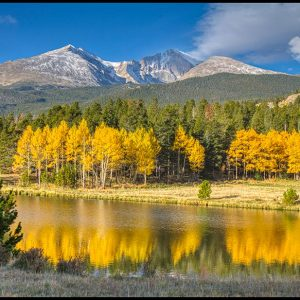"Mount Meeker, Longs Peak and bright yellow aspen trees of autumn in Rocky Mountain National Park, Colorado and Bible verse Isaiah 14:7-8. ""the trees rejoice over you"""