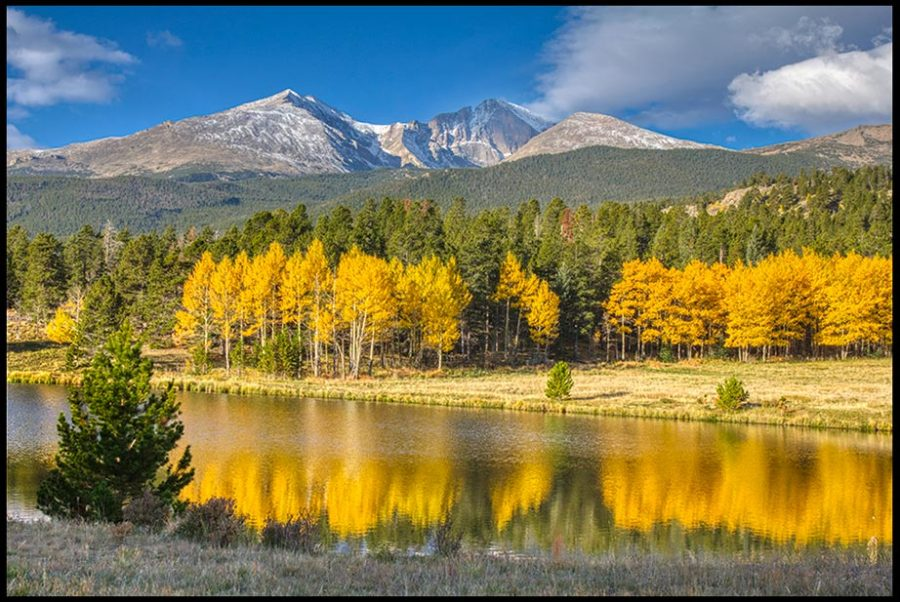 """Mount Meeker, Longs Peak and bright yellow aspen trees of autumn in Rocky Mountain National Park, Colorado and Bible verse Isaiah 14:7-8. """"the trees rejoice over you"""""""
