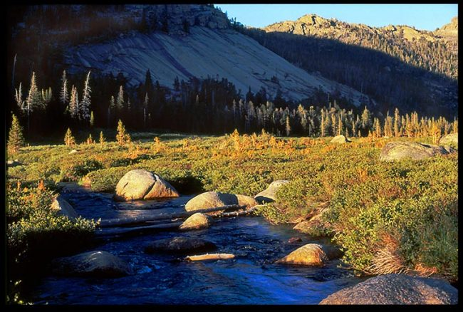 A quiet waters stream in a mountain Meadow, Wind Rivers Wilderness, Wyoming and Psalm 23:1-3 Bible verse