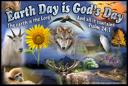 Celebrate The Creator On Earth Day The Visual Bible