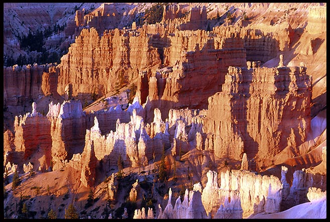 Red-orange and white hoodoo formations at sunrise in Bryce Canyon National Park, Utah and Isaiah 25:4 Bible Verse of the Day: God our defense
