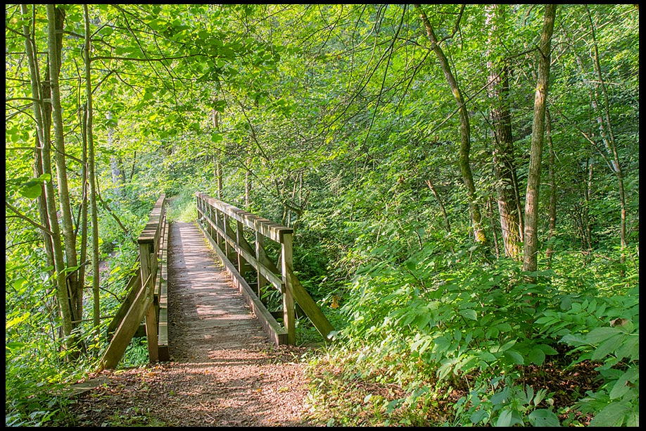 Footbridge through green trees in Forestville Mystery Cave State Park and Bible verse Psalm 139 the everlasting way