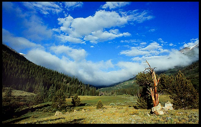 Blue sky and white clouds over an open valley, Collegiate Peaks Wilderness Area, Colorado. Bible verse Judges 5:5 the mountains quaked