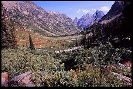 A mountain pass in Grand Teton National Park for a Bible verse of the day website