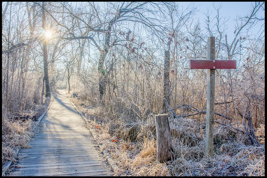 A frost covered woods and boardwalk backlit by the sun and Colossians 2:13b-14 walk God's pure path