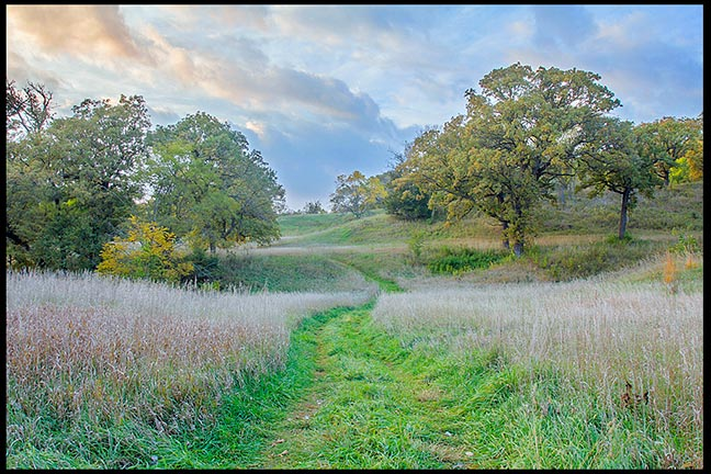 Path through a partial wooded meadow. Christian photographers show me you best work.