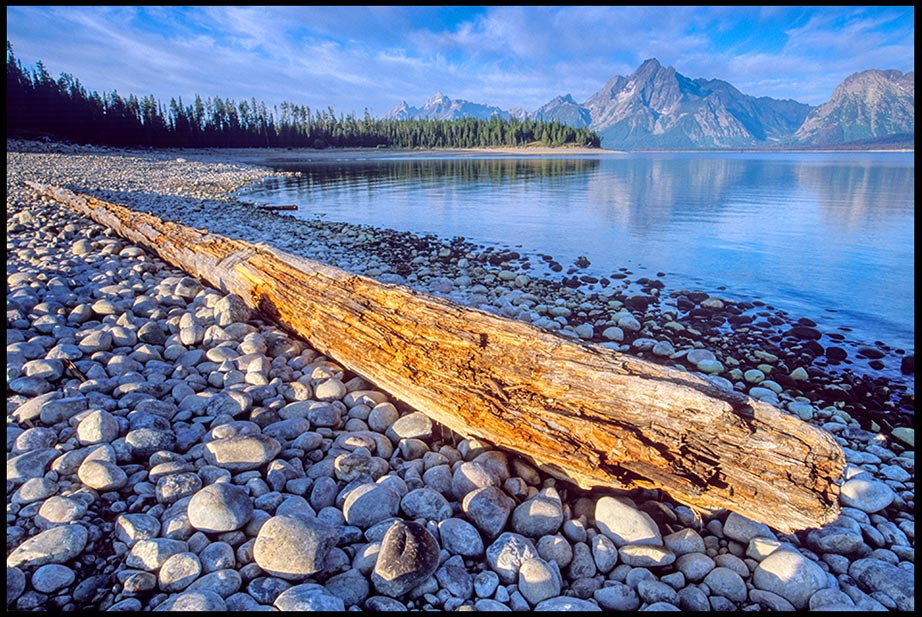 An old log on the rock beach of Coulter Bay with Mount Moran in the background, Grand Teton National Park, Wyoming. Bible verse Psalm 96:5-6 majesty of God