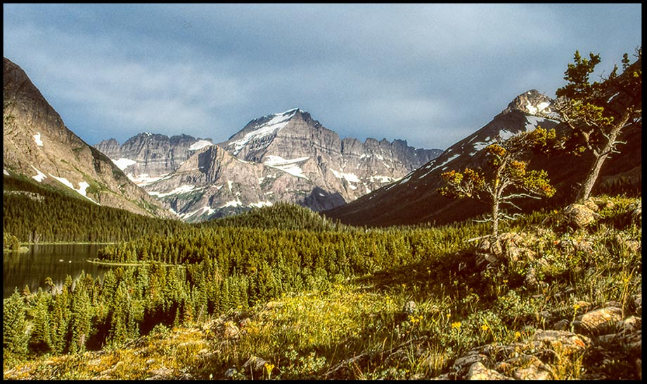 A rugged Mountain landscape in the Canadian Rockies with a lake and forest, Waterton Lakes National Park, Alberta