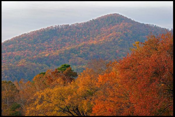 """Fall colors on the mountains and Trees around Cades Cove, Great Smoky Mountains National Park, Tennessee and Psalm 145:5-6"""" God's glorious splendor bible verse"""