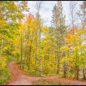 A trail through autumn trees in Jay Cooke State Park, Minnesota and Bible verse Jeremiah 32:38-39 Path to God