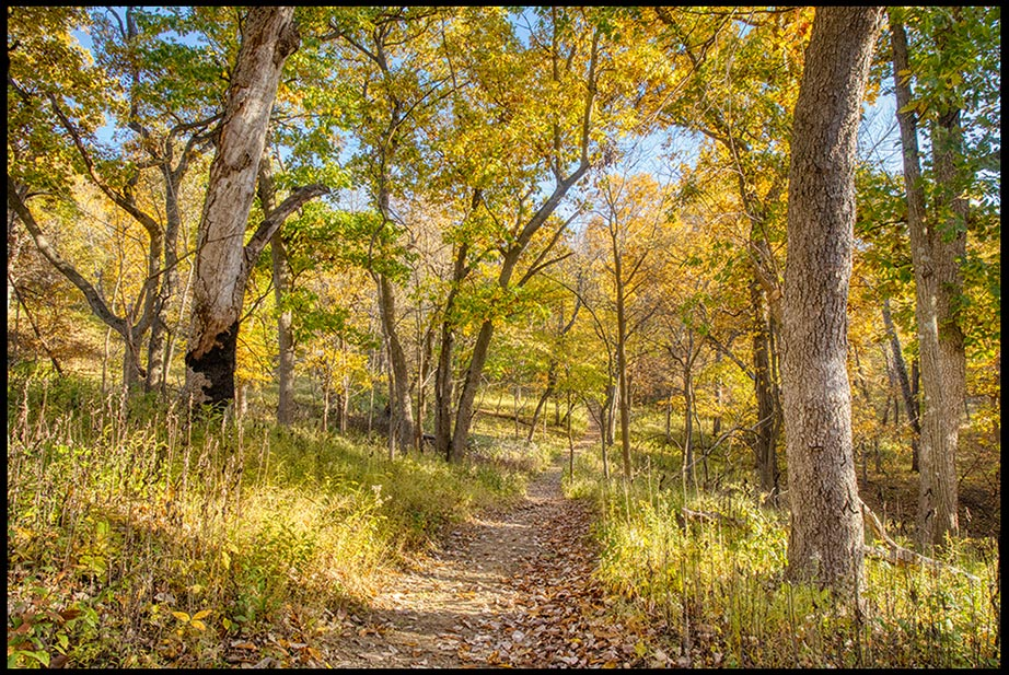 A path of peace, trail 3 in Indian Cave State Park, Nebraska through yellow fall colors on trees on a autumn day. John 20:21 Bible verse