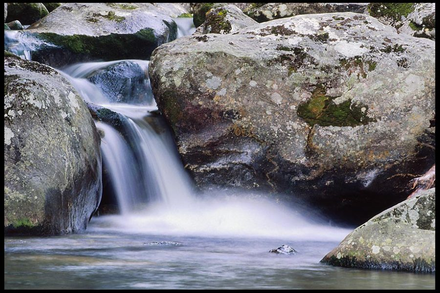 A small waterfall flows over rocks in a stream, Pisgah National Forest, North Carolina and John 7:38 Bible verse about living water