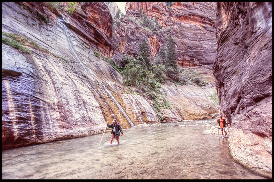 """Hikers in the waters and rock walls of the Virgin River Narrows, Zion National Park, Utah. Bible Verse of the Day: Isaiah 43:2 """"When youpass through the waters"""""""