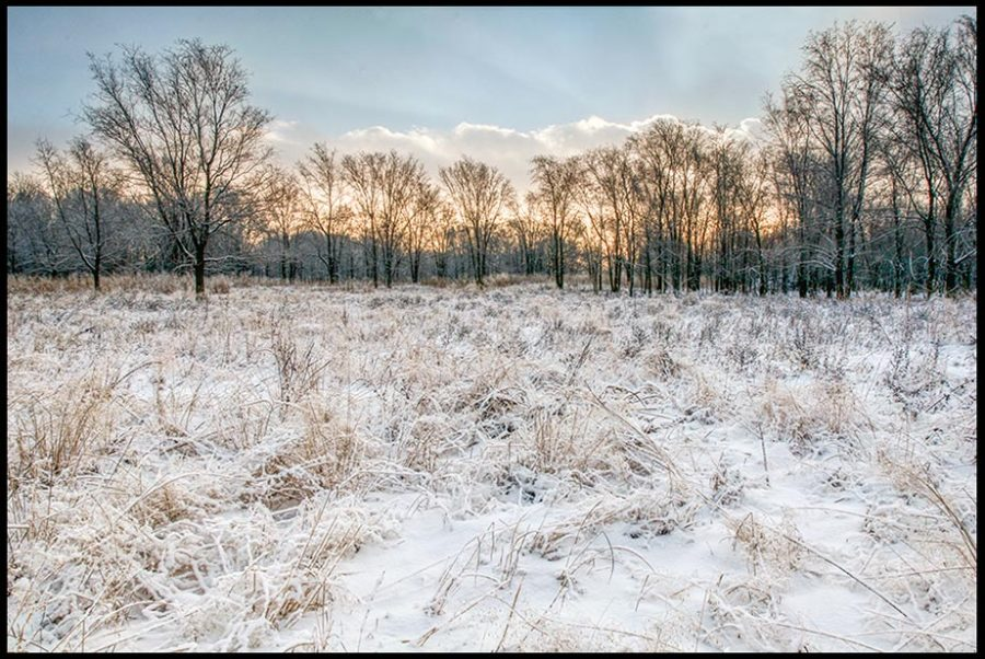 Snow covered meadow and winter trees in the background, Lake Manawa State Park, Iowa. Bible Verse of the Day: Psalm 147:17