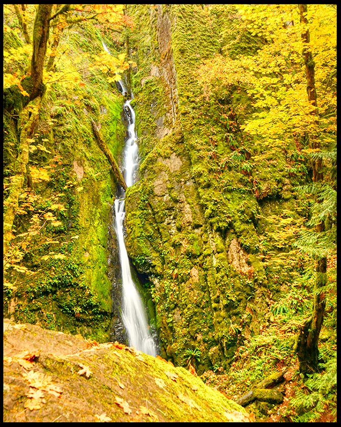 Golden fall maple trees surround Lower Soda Falls, a waterfall in Cascadia State Park, Oregon Visual Bible Verse of the Day: Guest Post by Kevin Shilts Genesis 28:16 The Lord is in this Place