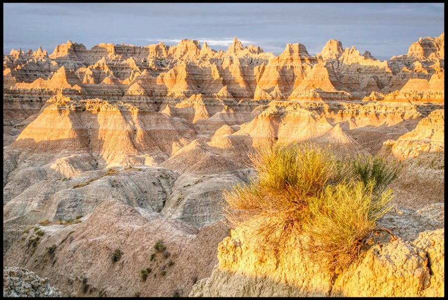 Desert Bush and Rock Formations, Badlands National Park, South Dakota and Luke 5:16. Jesus would often slip away to the wilderness. Bible Verse