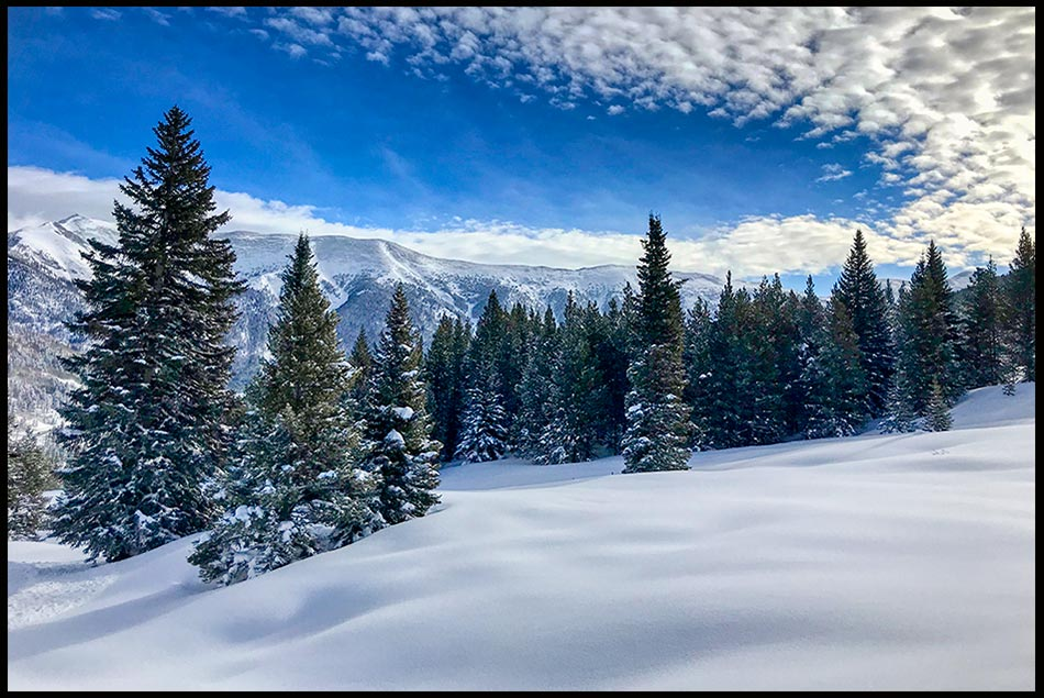 A snow covered ski slope through pine trees with blue sky and puffy clouds at Copper Mountain, Colorado
