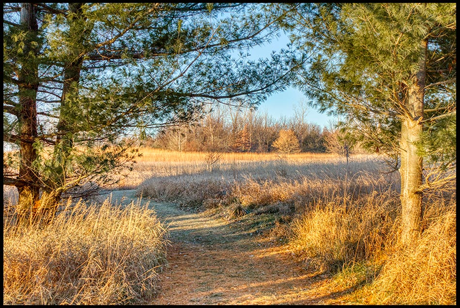 A fall Path to follow through pine trees that look like a gate, Chalco Hills State Recreation Area, Nebraska. Bible Verse of the Day: Psalm 25:4-5 and God's Path to Follow