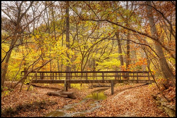 The David Andersen Bridge over a small stream in fall, Platte River State Park, Nebraska. Bible Verse of the Day: John 5:25. crossed over from death to life